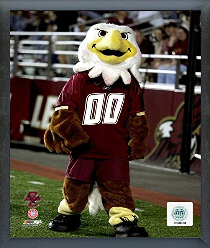 NCAA Boston College Eagles Team Mascot Photo (Size: 17