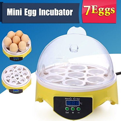 Kaluo Mini Digital Transparent Chicken Duck Goose 7 Egg Incubator Egg Hatcher by Kaluo