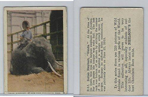 V67 Neilson's Chocolate, Wild Animals, 1930's, D15 Indian Elephant