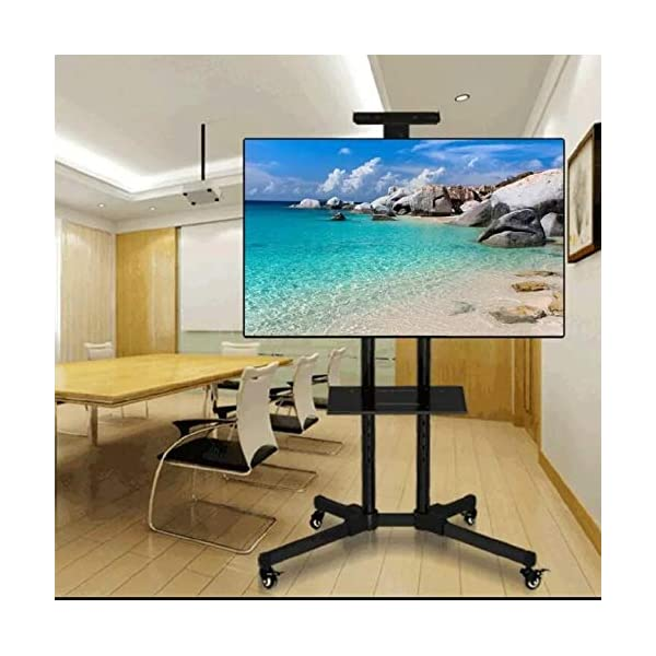 TV Stands with Wheels