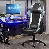 Ergonomic High Back Racing Style Gaming Chair - Gray Apontus