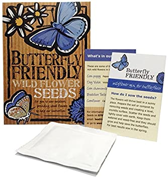 Butterfly Friendly Wild Flower Seeds, U2014u2014u2014u2014u2014  Beautiful Flowers In