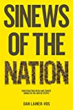 Sinews of the Nation: Constructing Irish and Zionist Bonds in the United States, Dan Lainer-Vos, 0745662641
