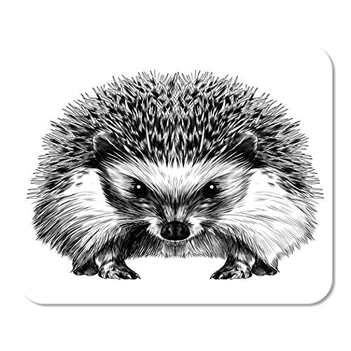 Suike Mousepad Computer Notepad Office Drawing Hedgehog Sketch Line Engraving Forest Animal Angry Encyclopedia Home School Game Player Computer Worker 9.5x7.9 Inch (Outline Hedgehog)