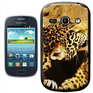 Fancy A Snuggle - Carcasa rígida para Samsung Galaxy Fame S6810, diseño de leopardo