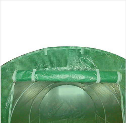 Quictent 16 Stakes KOREA Reinforced PE Cover Greenhouse 15'x7'x7' Arch LARGE Walk in Green Garden Hot House for Plants by Quictent (Image #5)