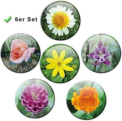 Diseño de flores - colorido imanes conjunto de 6 de diámetro 5 cm ...