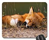 fox mouse pad - Fox Mouse Pad, Mousepad