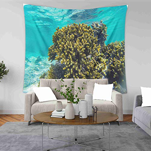 Capsceoll Happy Father's Tapestry, Large 80x60 Inches Size of Tapestries by Tanzania Zanzibar Scuba Diving Underwater Snorkeling Coral and Fish in Holiday a Dorm Décor Tapestry for Living Home