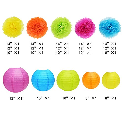 APLANET Set of 20 Assorted Rainbow Color Paper Pom Poms and Paper Lanterns, 5 Colors, for Party, Baby Shower and Wedding Decorations by APLANET USA (Image #1)