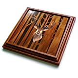 3dRose trv_252339_1''Deer Antler Animals Wild Forest Tree Nature Wood Illustration Trivet with Tile, 8'' x 8''