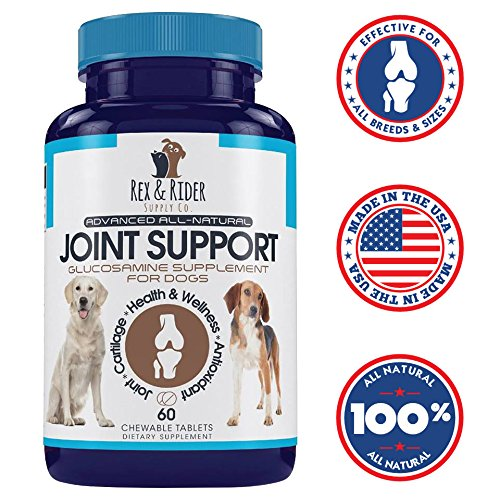Glucosamine for Dogs with Chondroitin, Rex & Rider Extra Strength All Natural Joint Supplement for Dogs, Arthritis Pain Relief for Dogs, Hip Dysplasia Dog MSM for Dogs 60 Chewable Tablets USA Made
