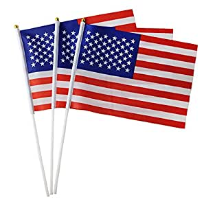 "guerbrilla nosotros Stick bandera 12""x8"", plástico, con cabeza redonda"