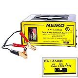 Neiko Tools USA 6/12 V Battery Charger