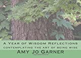 A Year of Wisdom Reflections: contemplating the art of being wise by Rev. Amy Jo Garner (2016-01-26)