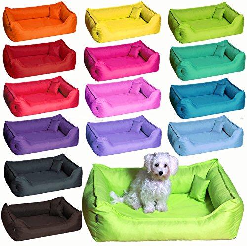Cama para perro DONALD ORTO Vital Anti-pelo 80cm M rojo vino bordeaux Revestimiento de teflón con Colchón de confort: Amazon.es: Productos para mascotas