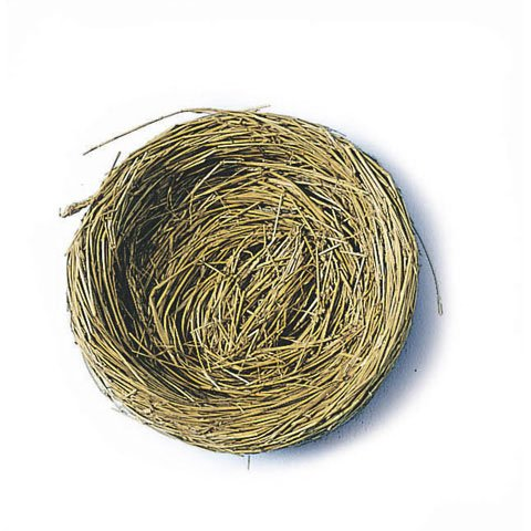 Miniature Natural Bird Nests 3