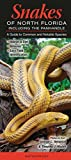 img - for Snakes of Northern Florida including the Panhandle: A Guide to Common & Notable Species book / textbook / text book