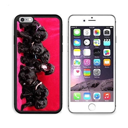 MSD Premium Apple iPhone 6 Plus iPhone 6S Plus Aluminum Backplate Bumper Snap Case Miniature Schnauzer puppies IMAGE 19890847 by MSD Customized (Jordan Miniatures)