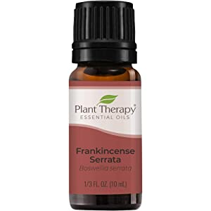 Plant Therapy Frankincense Serrata Essential Oils 100% Pure, Undiluted, Natural Aromatherapy, Therapeutic Grade 10 mL (1/3 oz)