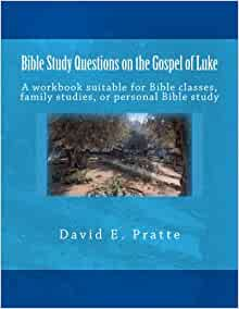 Bible Study Questions on the Gospel of Luke: A workbook