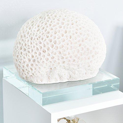 WELLAND Polyresin Tabletop Coral Decor Ornaments w/ Glass Base, - Base Polyresin