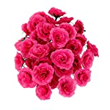 Dovewill 10 Colors Raw Silk Artificial Rose Flower Heads Bulk Wedding Party Bouquet Hats Craft Projects DIY Flower Head Pack of 50 - Rosy