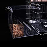 KINTOR No-Mess Bird Feeder NO Assembly with Rough-surfaced Stainless Steel Perch (M-6.3x6.3x6.3inch)