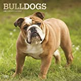 Bulldogs 2020 12 x 12 Inch Monthly Square Wall