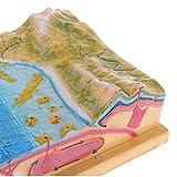 Fityle Plastic Scientific Terrain Plate Tectonics