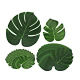 Canika Tropical Palm Leaves, 30Pcs Tropical Palm