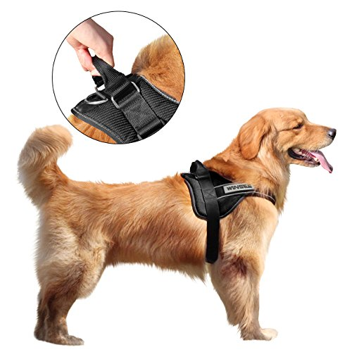 No Pull Dog Vest Harness, WINSEE Soft Reflective Harness ...