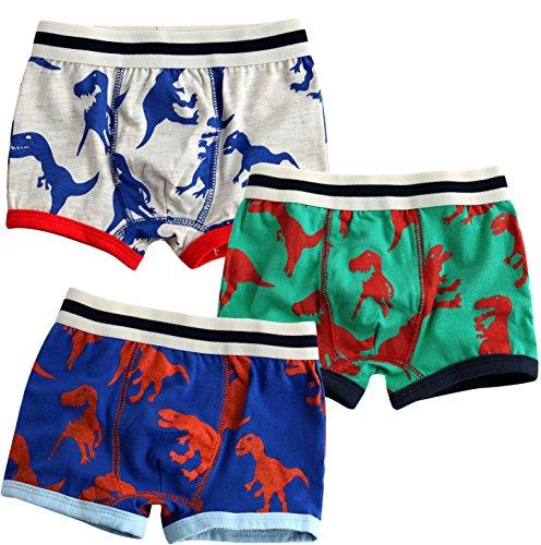JN&LULU Toddler Boxer Brief Baby Underwear Cotton Underwear Boys Set Dinosaur-2T