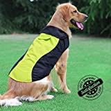 Cheap Ezer High Visibility Dog Coat- Safety Waterproof Dog Jacket for Cold Weather (M)