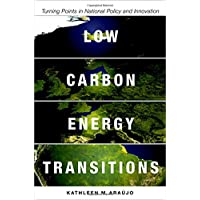 Low Carbon Energy Transitions: Turning Points in National Policy and Innovation