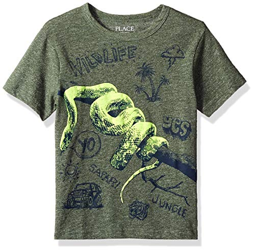 (The Children's Place Big Boys' Short Sleeve Fashion T-Shirt, Garden CRESS 00574, XS (4))