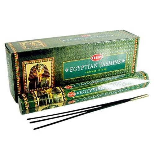 120 Incense Sticks Bulk Pack, HEM, Zen Aromatherapy, 6 Boxes of 20 Sticks - Egyptian Jasmine ()