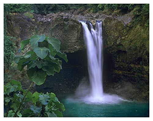 Global Gallery Rainbow Falls Cascading into Pool, Big Island, Hawaii-Paper Art-42''x32'' by Global Gallery