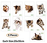 Amaonm 9 PCS Removable 3D Cute Animals Wall Decals Lovely Cat Dog Hamster Through The Wall Fun Kids Room Stickers Nursery Room Wall Art Decor Bathroom Decal Babys Stickers Classroom Decoration Decal
