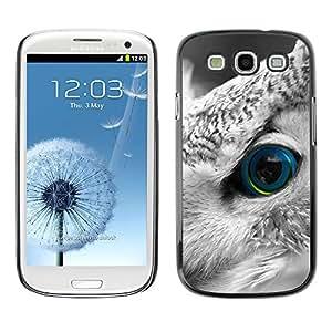 Qstar Arte & diseño plástico duro Fundas Cover Cubre Hard Case Cover para SAMSUNG Galaxy S3 III / i9300 / i747 ( Owl Smart Bird Feather Eye Looking)