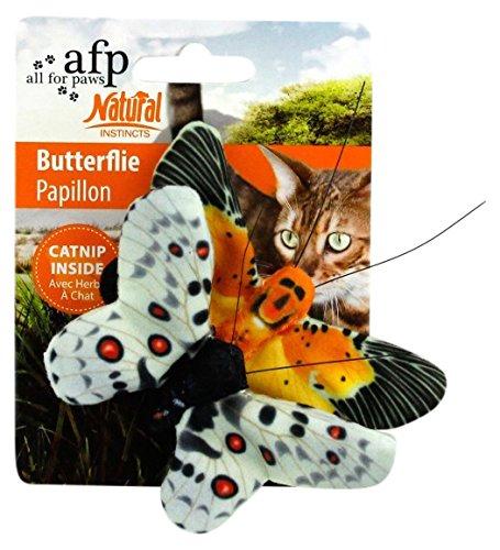 All for Paws Juguete para Gatos Catnip En Forma de Mariposa, 10.5 cm: Amazon.es: Productos para mascotas