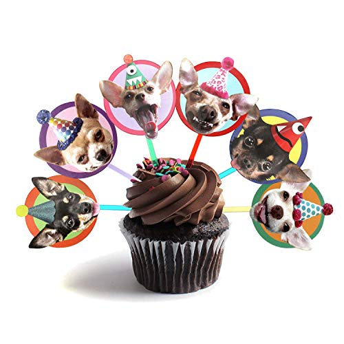 Chihuahua Cupcake Toppers, set of 6 different birthday dogs party decorations