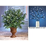 Set of 6 Battery Operated LED Lighted Branches Indoor Outdoor White Lights Holiday Decor Christmas Decoration