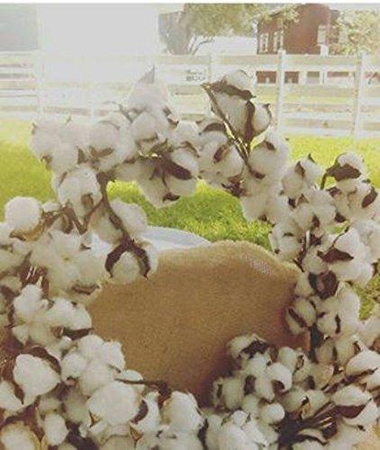 24 Inch Real Cotton Wreath Farmhouse Decor Christmas Vintage Wreath Handmade Garden Mirror