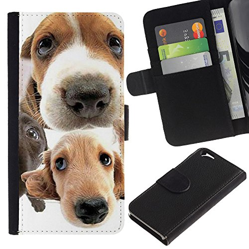 EuroCase - Apple Iphone 6 4.7 - golden retriever jack Russell terrier - Cuir PU Coverture Shell Armure Coque Coq Cas Etui Housse Case Cover