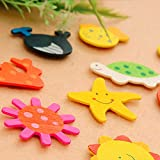 CraftDev Colored Wooden Cartoon or Nature Theme Fridge Magnets ( Set of 40 Random Magnets )