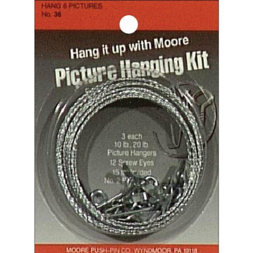 Moore Push Pin Picture Hanging Kit