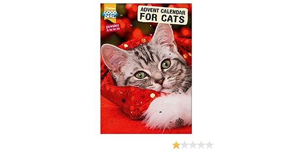 Armitage Pet Care Pawsley Good Girl Cat Advent Calendar 72g