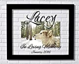 Pet Memorial Frame - Floating Frame - Personalized Custom Date - In Loving Memory - Photo Picture Frame - Dog Cat Bird Animal Pet Loss Remembrance