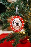 Pearhead Jingle Bell Pup Photo Ornament